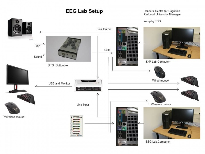 File:EEG Lab Setup.jpg